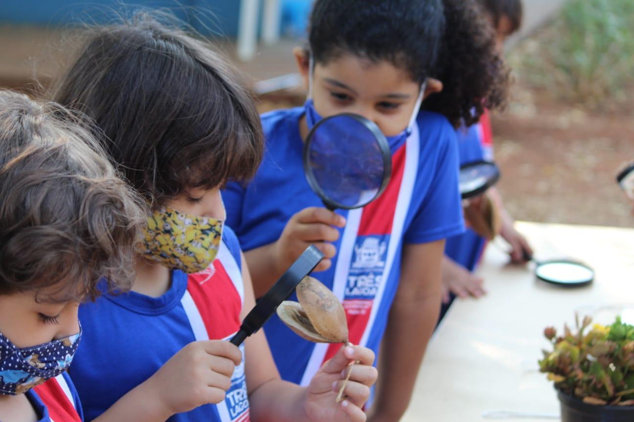 CEI Olga Salati Marcondes realiza Semana da Criança com muito aprendizado, diversão e contato com a natureza 1