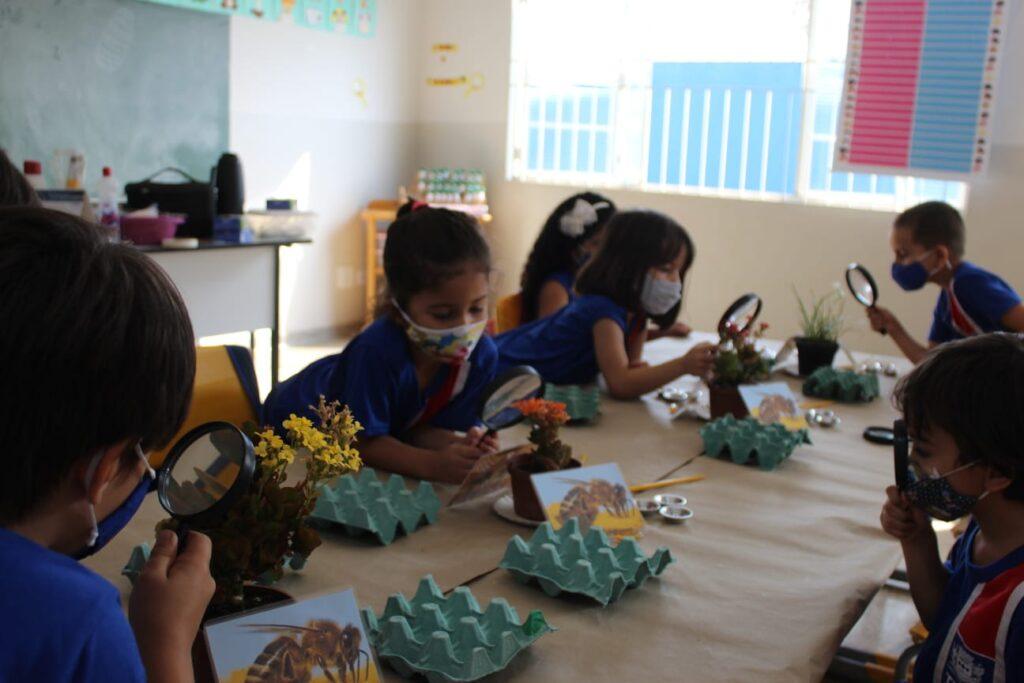 CEI Olga Salati Marcondes realiza Semana da Criança com muito aprendizado, diversão e contato com a natureza 11