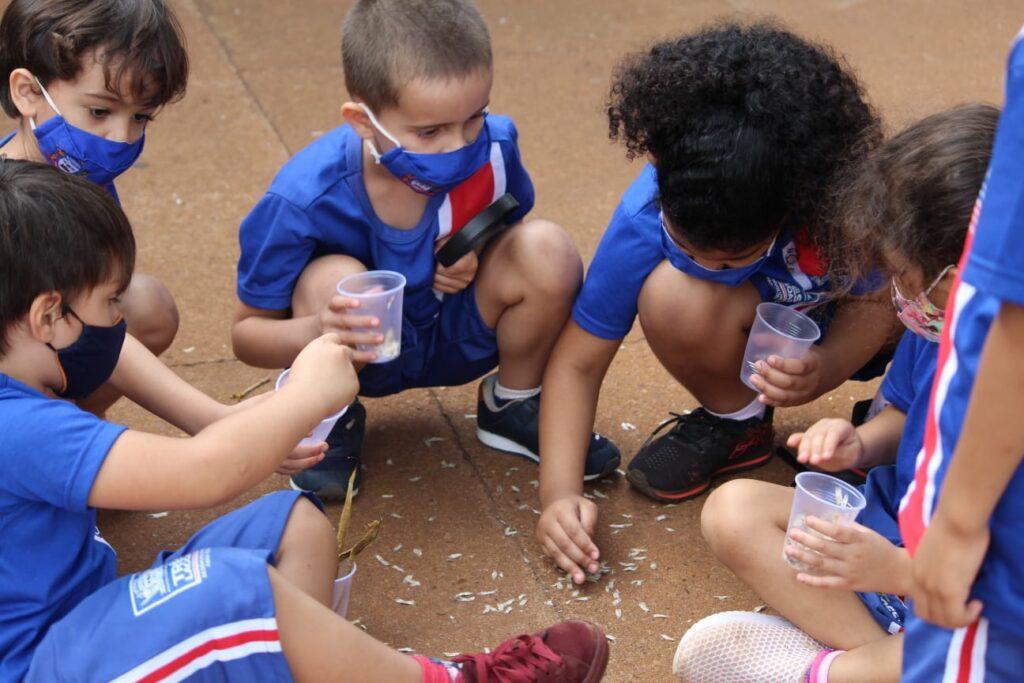 CEI Olga Salati Marcondes realiza Semana da Criança com muito aprendizado, diversão e contato com a natureza 3